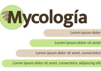 Tarjetas Micología